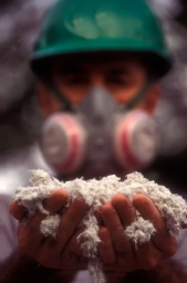 Asbestos Lawsuit